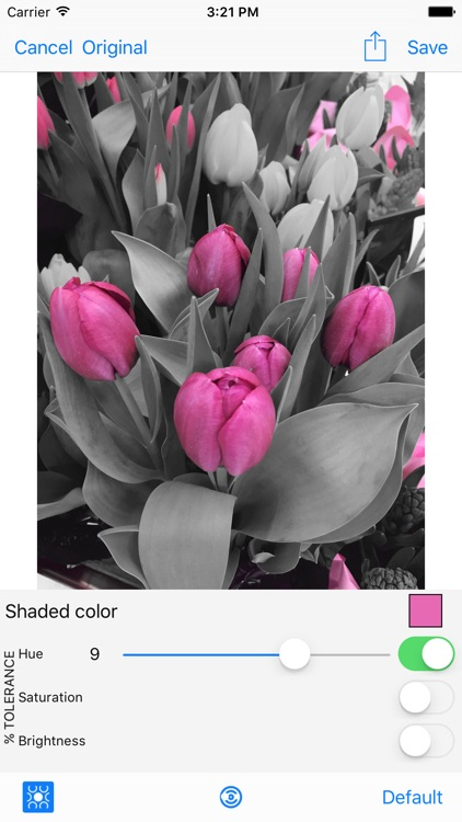 Shaded - Photo Color Modifier