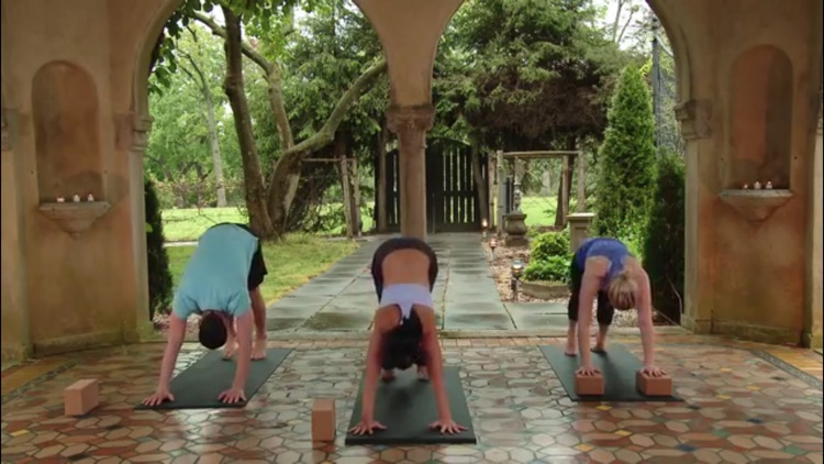 Yoga Master Class screenshot-2