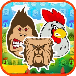 Angry Animals Match-3 Free Game