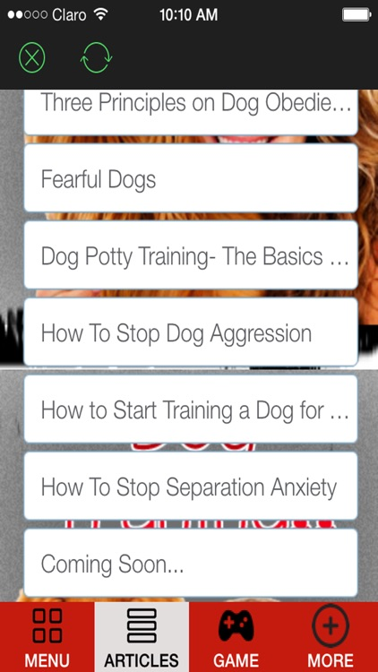 'A How to Train a Puppy and Stop Dog Barking With Great training classes and Amazing Tips screenshot-1