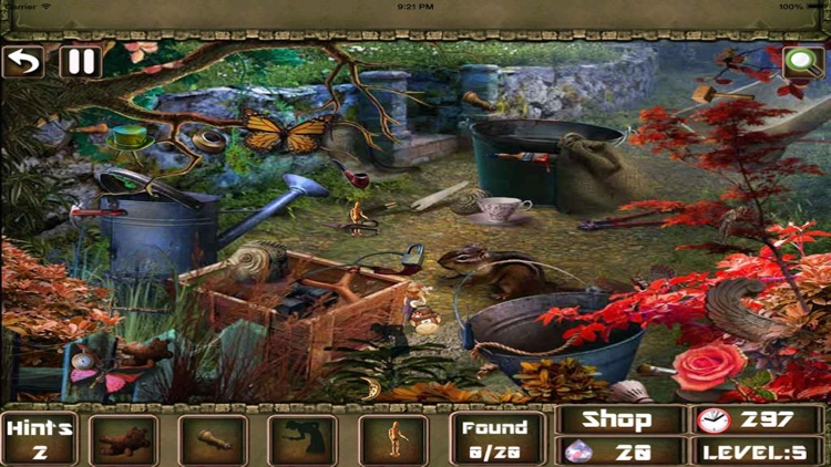 Hidden objects mystery last palace