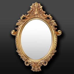 Pocket Mirror Pro - Photo Editor to put on make up & check your teeth, eyes, hairstyle