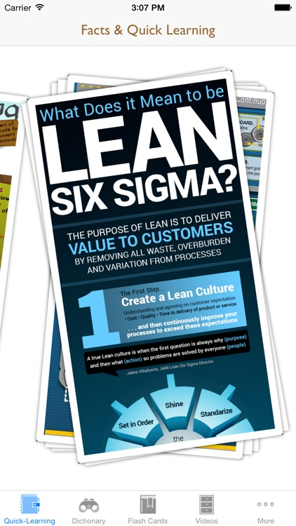 6 Sigma Guidance: Six Sigma Cheat Sheets with Glossary and Free Video Lessons screenshot-1