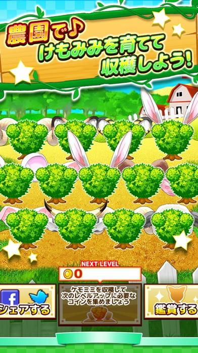 けもみみ農園 - 放置 育成 着せ替え ゲーム -スクリーンショット2