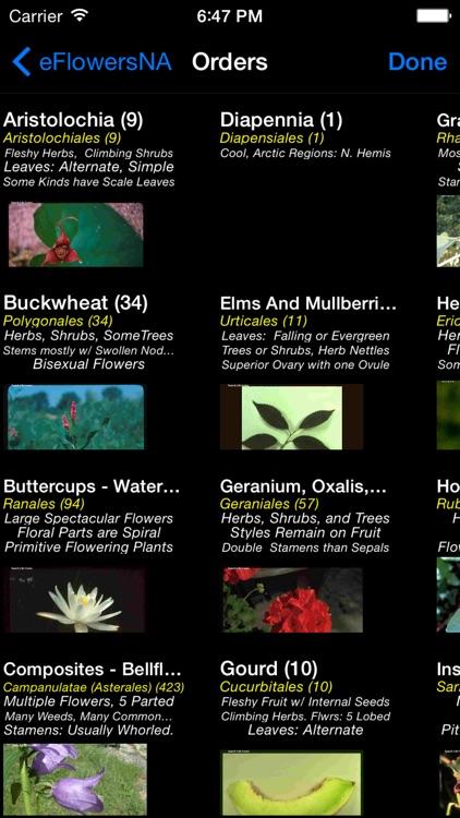 Wildflowers of North America - eFlowersNA - A Wildflower App screenshot-3