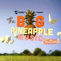 Big Pineapple Festival