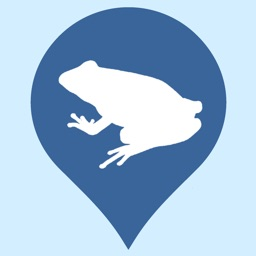Regional Amphibians