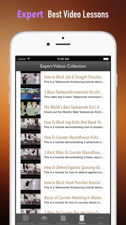 Tae kwon do 101: Quick Learning Reference with Video Lessons and Glossary screenshot-4