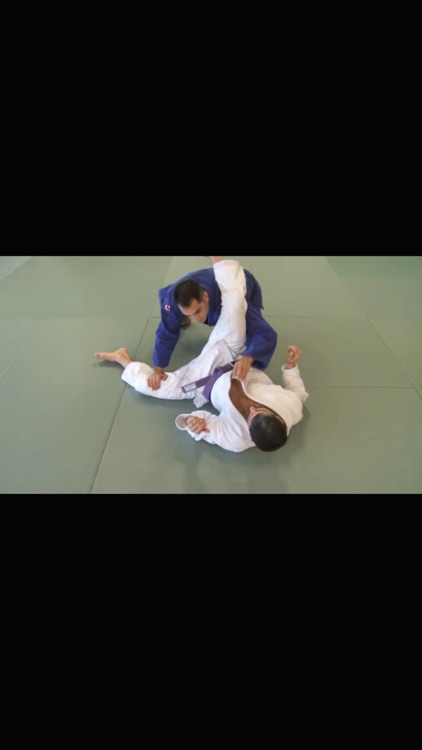 Brazilian Jiu Jitsu: Brown Belt Requirements screenshot-3