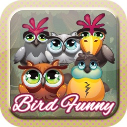 Bird Funny Sweet Star - Friends Blast Fun Puzzle Free Challenge Game Mania