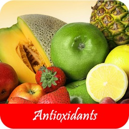 Foods High In Antioxidants - Rich Sources