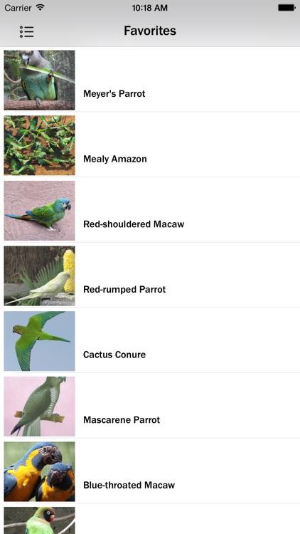 Parrots Species