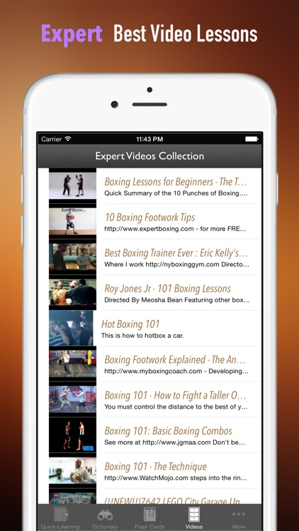 Boxing 101: Quick Learning Reference with Video Lessons and Glossary screenshot-4