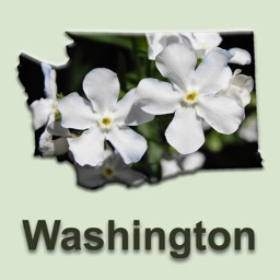 Washington Rare Plants