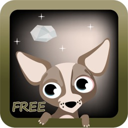 Henry the Chihuahua Free