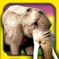 Codes for Safari Run Free - Wild Animal Jam Running Survival Games for Kids Hack