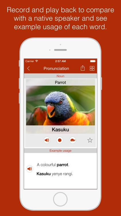 Swahili Primer - Learn To Speak And Write Swahili Language: Grammar, Vocabulary & Exercises screenshot-3