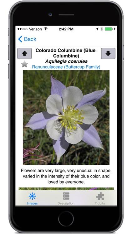 Colorado Rocky Mtn Wildflowers screenshot-3