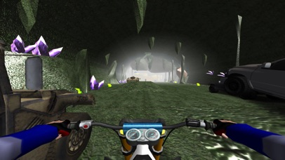 FPV Motocross Racing VR Simulator screenshot 5