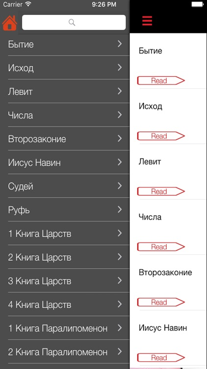 русский библии - Russian Bible