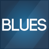 Vievace LLC - Blues Backing Tracks アートワーク
