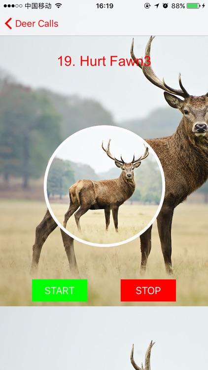 Deer Hunting Calls Plus screenshot-3