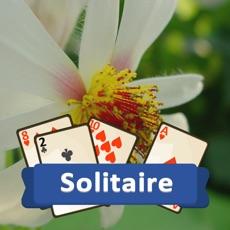 Activities of Solitaire Plants