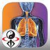 Qigong Breathing Video Lesson