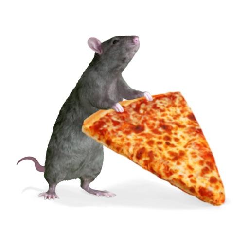 Pizza Rats