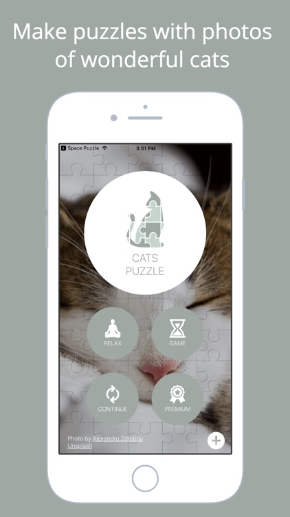 Cats Puzzle - Play with your favorite cats photos