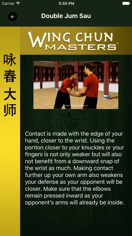 Wing Chun Masters 2 - HD screenshot-1