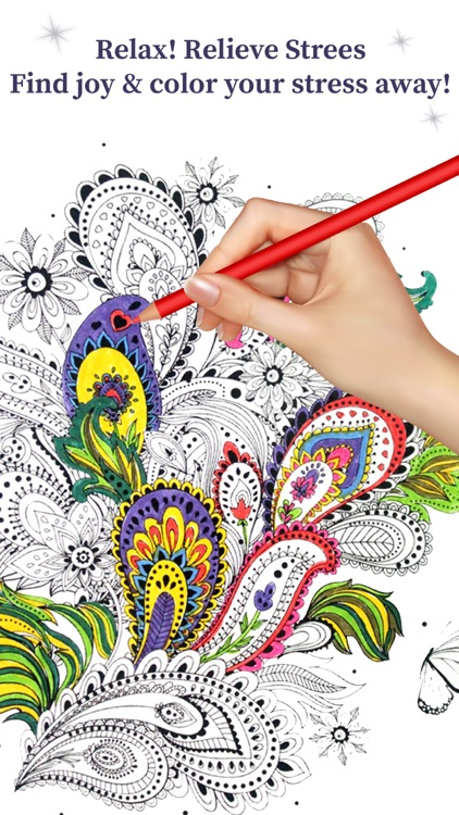 Coloring Book For Adults - Paisleys Edition