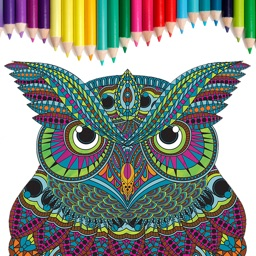 Adults Coloring Book: Anti stress Relief Therapy