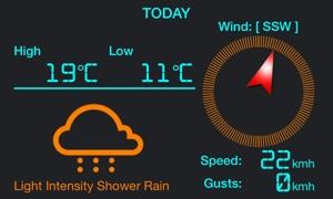 Local Digital Weather Station Pro