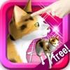 三毛猫にタッチ! ねこの鳴き声可愛い、いつでも遊ぶペット無料ネコアプリ!