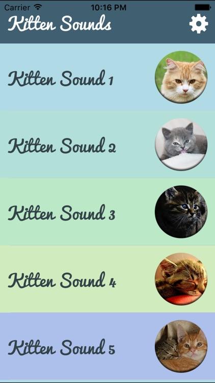 Kitten Sounds – Cat Meow Sound