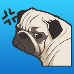 Pug Dogs Stickers
