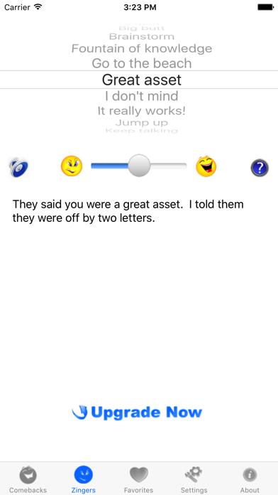 iZingerLite screenshot two