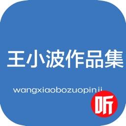 ——_王小波小说作品集_——