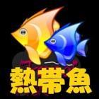 熱帯魚 icon