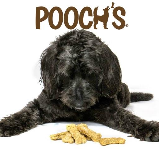 Pooch's Dog Treats
