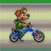 骑车的小熊 - 全新玩法!萌宠超级进化!