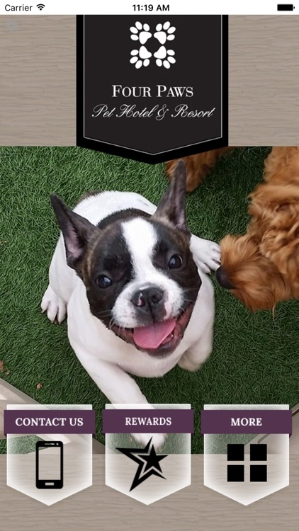 Four Paws Pet Hotel & Resort
