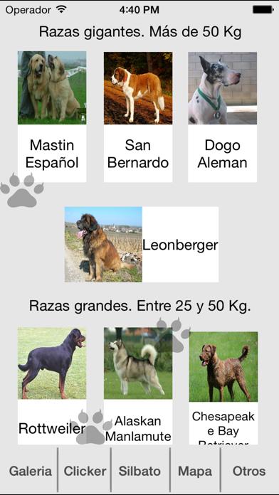 Entrena Tu Perro Screenshot 1