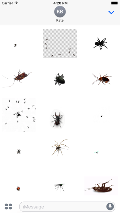 Animated Bugs screenshot one