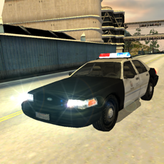 Activities of Need For Police Car Racing