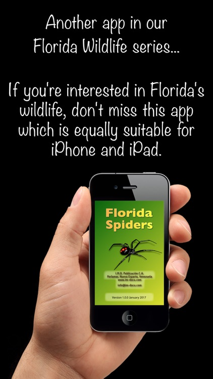 Florida Spiders - Guide to Common Species screenshot-0