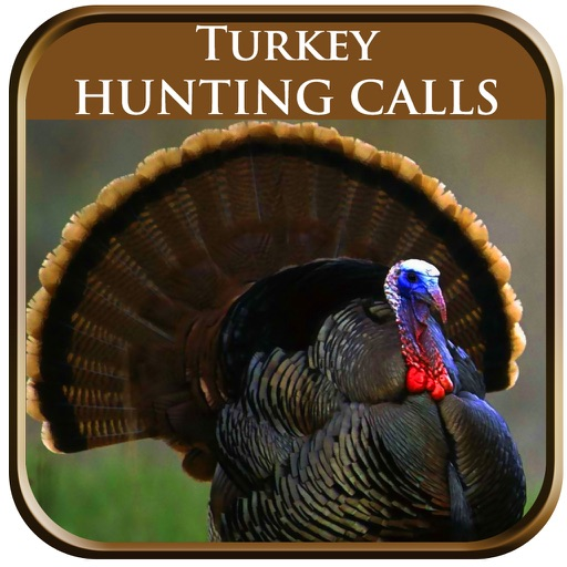 Turkey Hunting Calls Pro