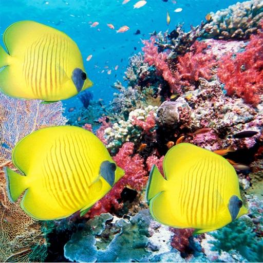 Fish Encyclopedia Pro