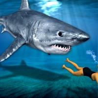 Codes for Angry Shark Revenge Attack: Chase Ocean Monster Hack